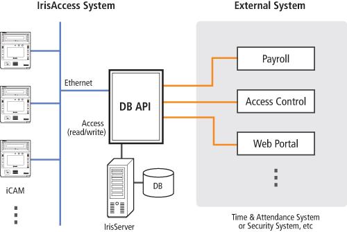 IrisAccess DB API Interface Architecture